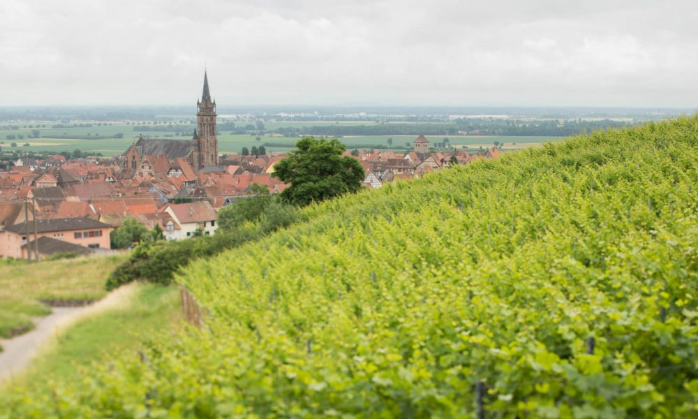 Dambach-la-Ville in the Alsace region of France. ©Kevin Day/Opening a Bottle