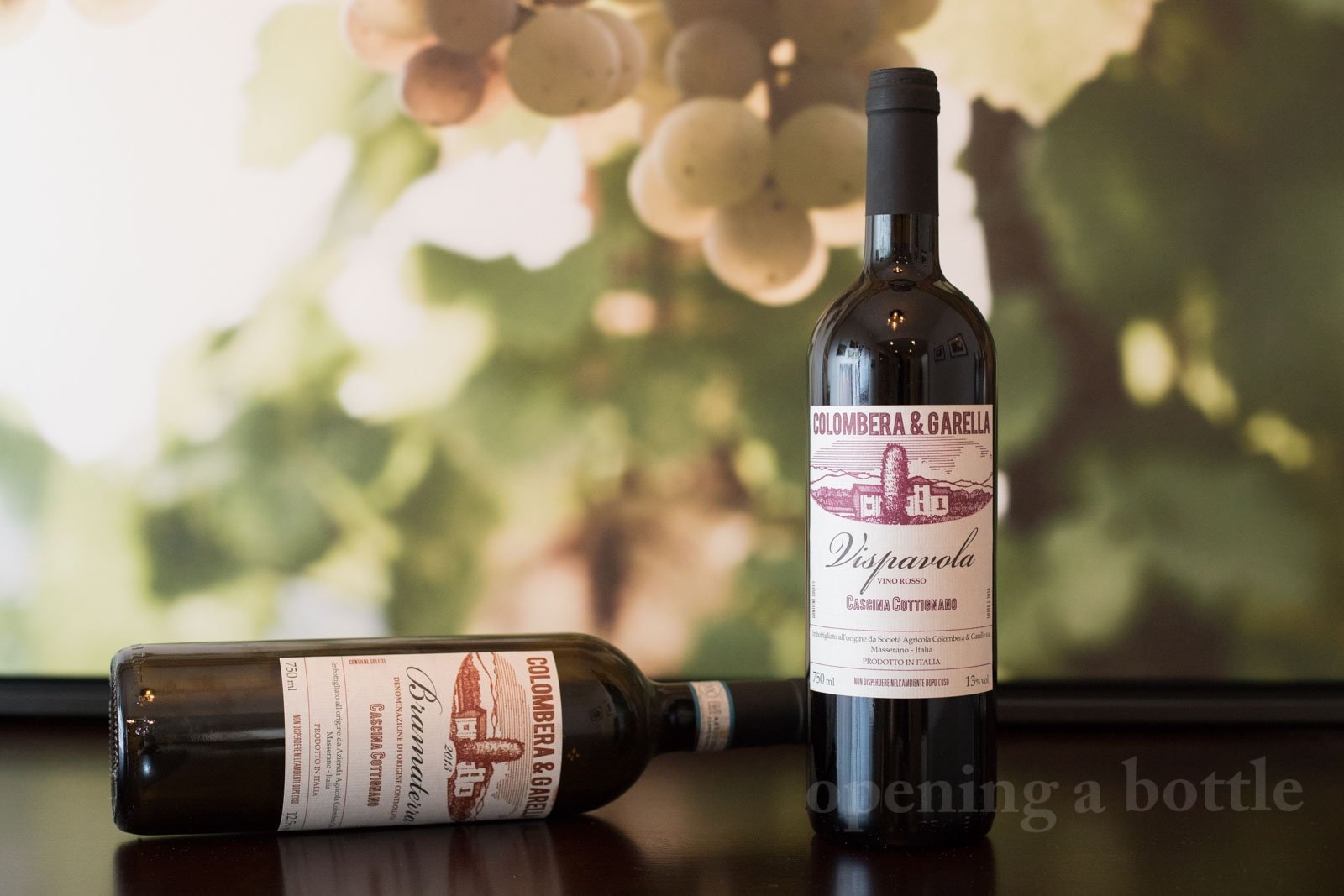 Colombera e Garella Vispavola & Bramaterra wines. ©Kevin Day/Opening a Bottle
