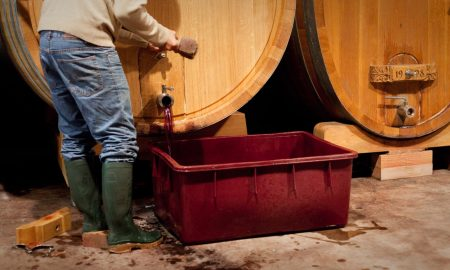 Essential Winemakers – Opening a Bottle
