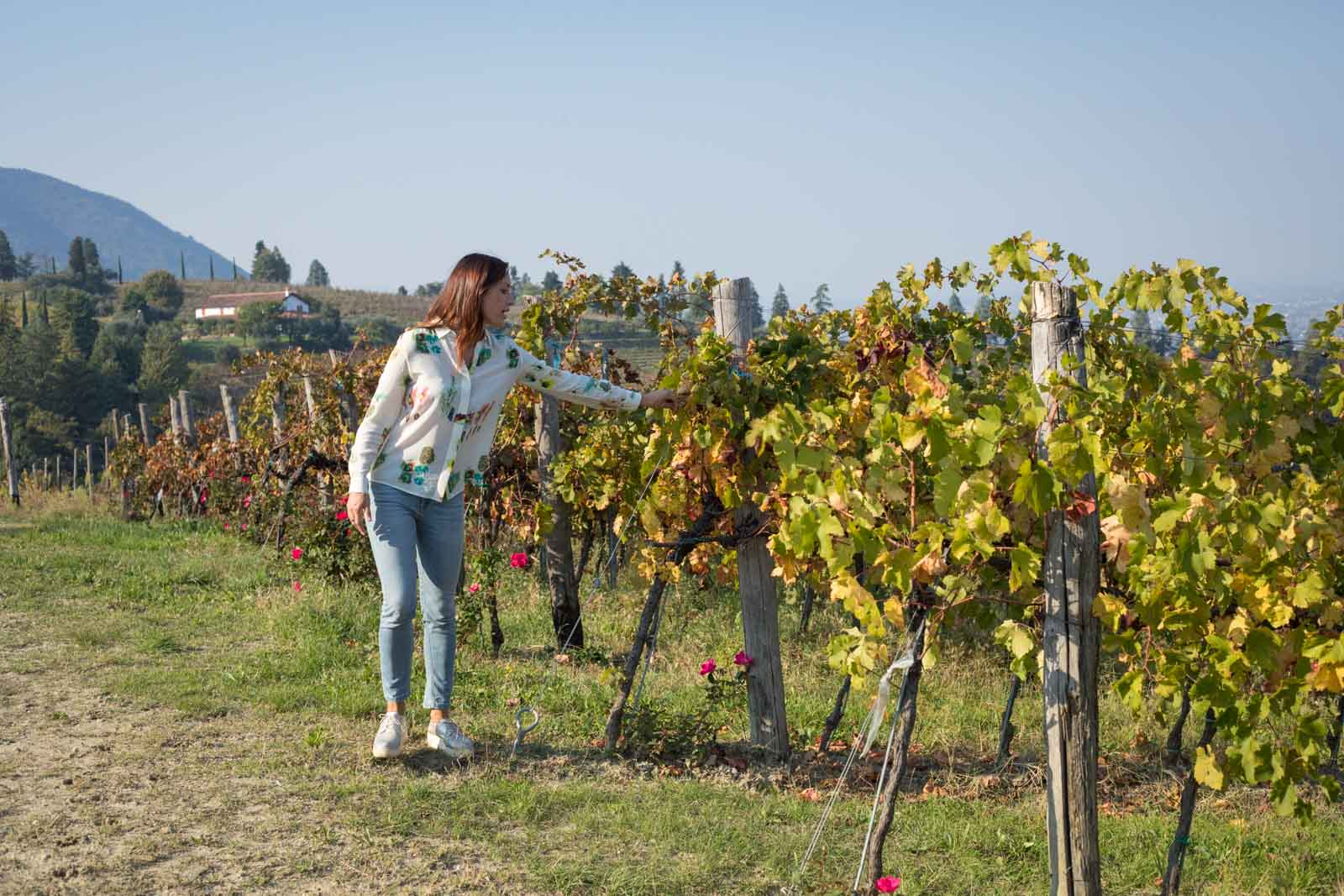 Winemaker Elisa Dilavanzo in her Moscato Giallo vineyard in Colli Euganei. ©Kevin Day/Opening a Bottle