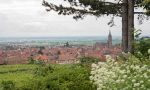 The beautiful village of Dambach-la-Ville in Alsace, France ©Kevin Day/Opening a Bottle