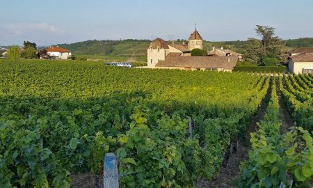 Château Pouilly-Fuissé in evening light. ©Frederick Wildman