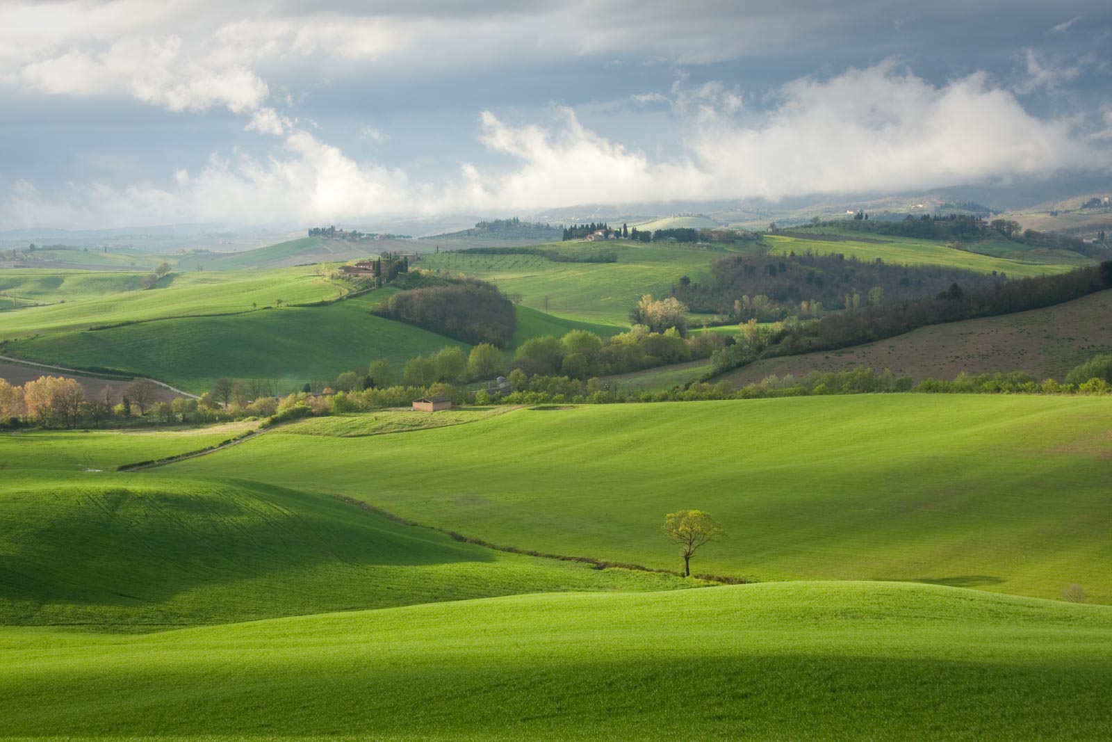 The Chianti Classico landscape near Poggibonsi — it's not all vineyards like the Langhe. ©Kevin Day/Opening a Bottle