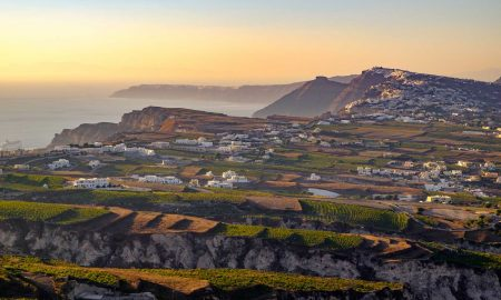 Vineyards of Santorini, Greece