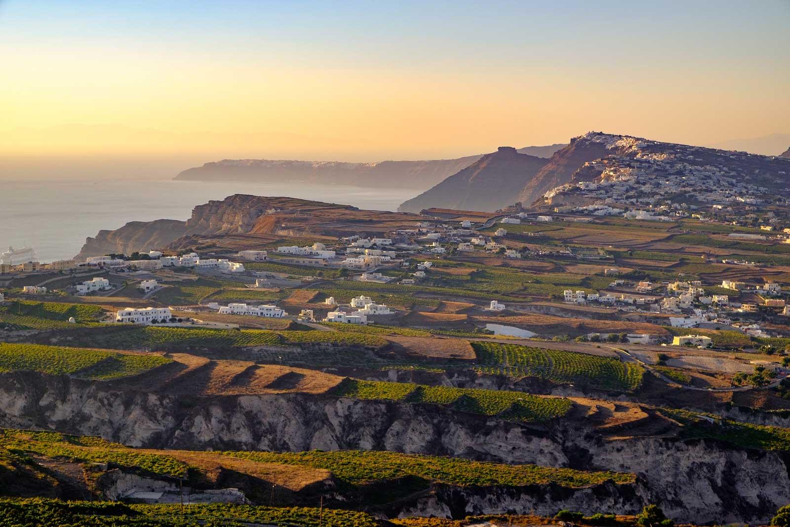 Vineyards of Santorini, Greece