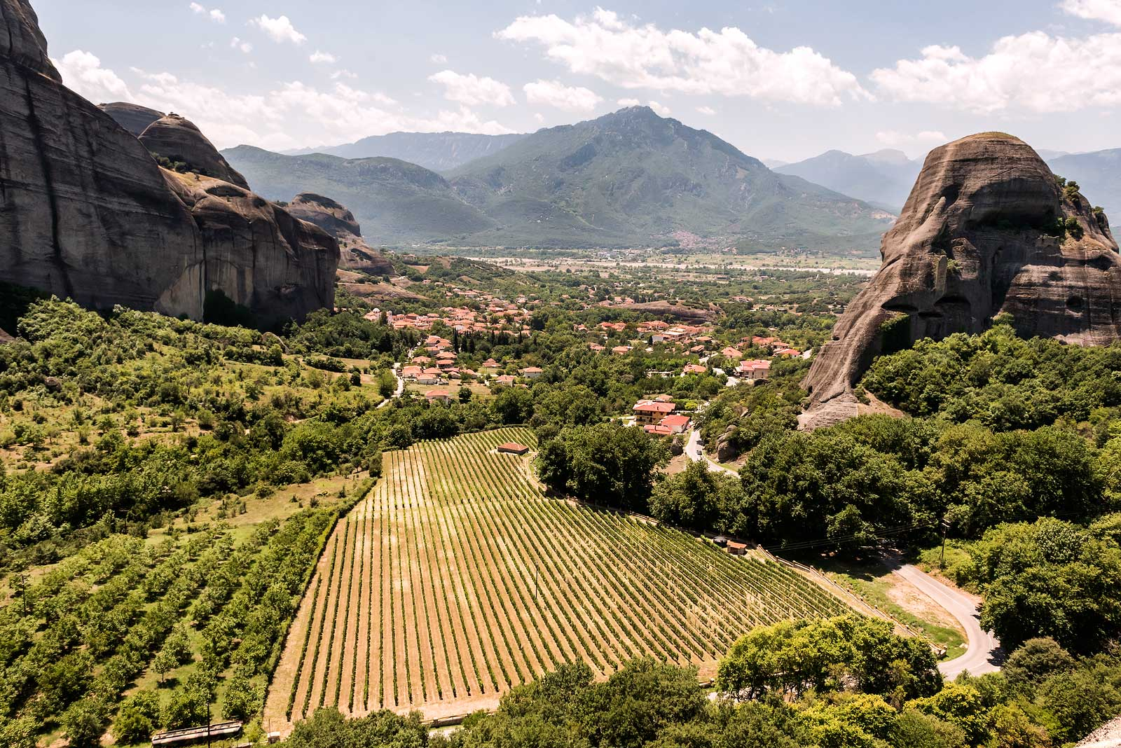 Vineyards near the UNESCO World Heritage site of Meteora.