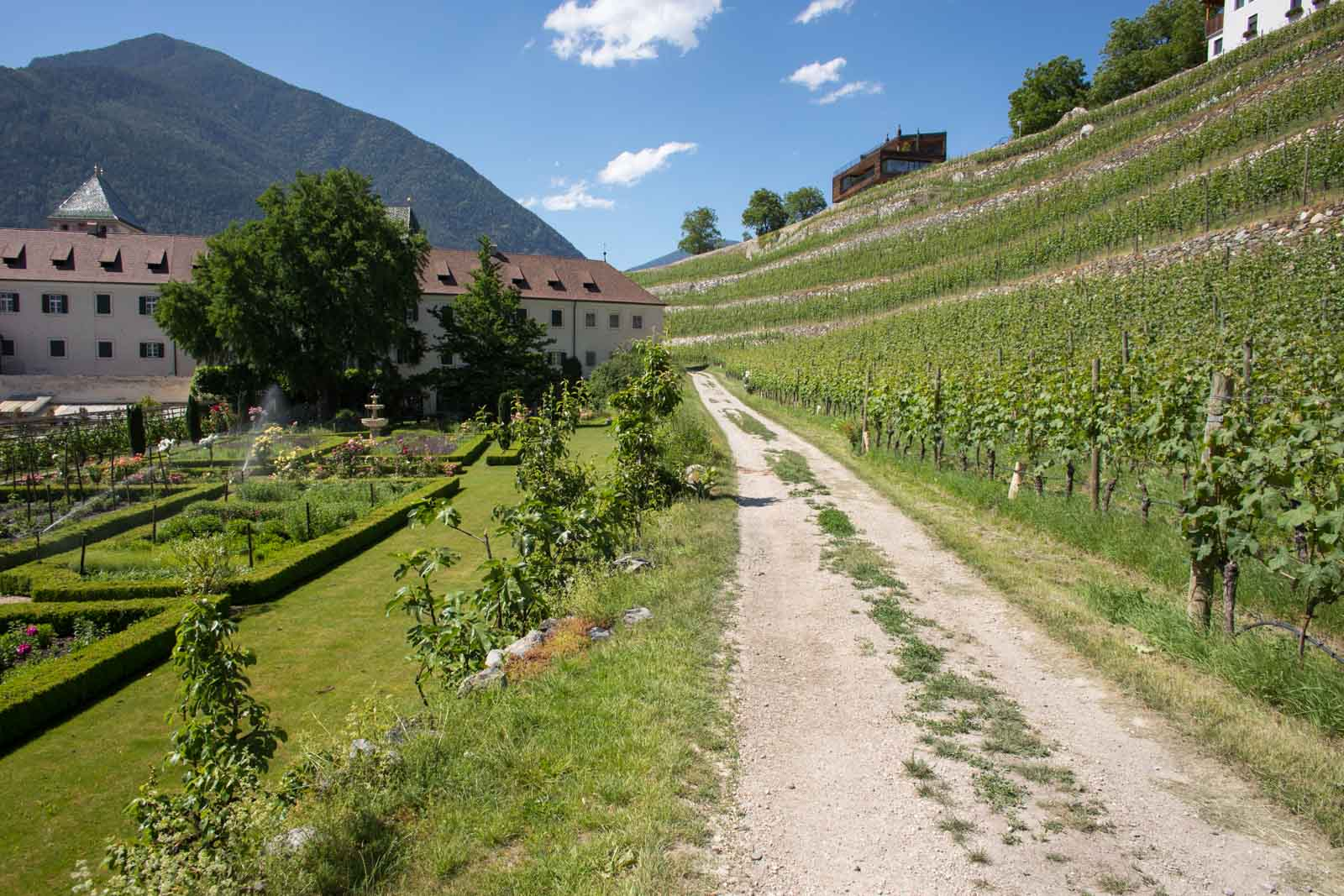 Terraced vineyards of Pinot Grigio, Sylvaner and Kerner surround the abbey complex. ©Kevin Day/Opening a Bottle