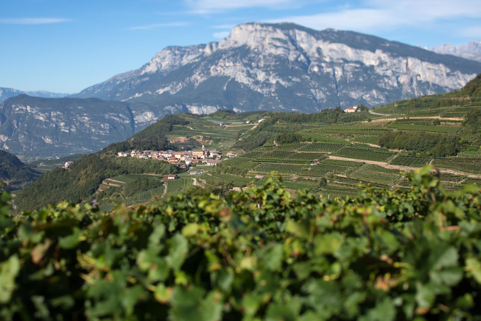 A view of the Val di Cembra, the high-elevation vineyards of Trentodoc in northern Italy. ©Kevin Day/Opening a Bottle