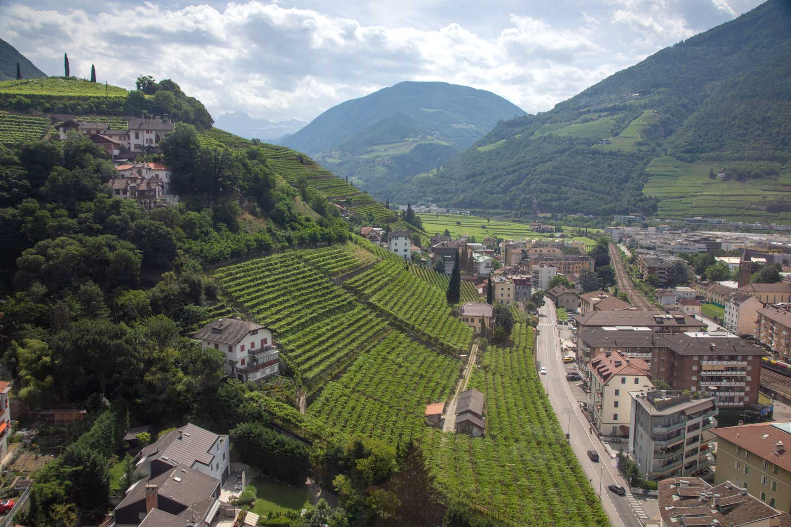 A view over the vineyards of Santa Maddalena above Bolzano, where Schiava is king. ©Kevin Day/Opening a Bottle
