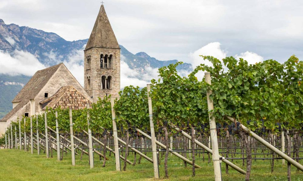The Kirchlein St. Michael amidst the Pinot Nero vines of Mazzone, near Egna, Alto Adige, Italy. ©Kevin Day/Opening a Bottle