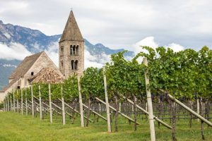 What's Noteworthy with Alto Adige Wines