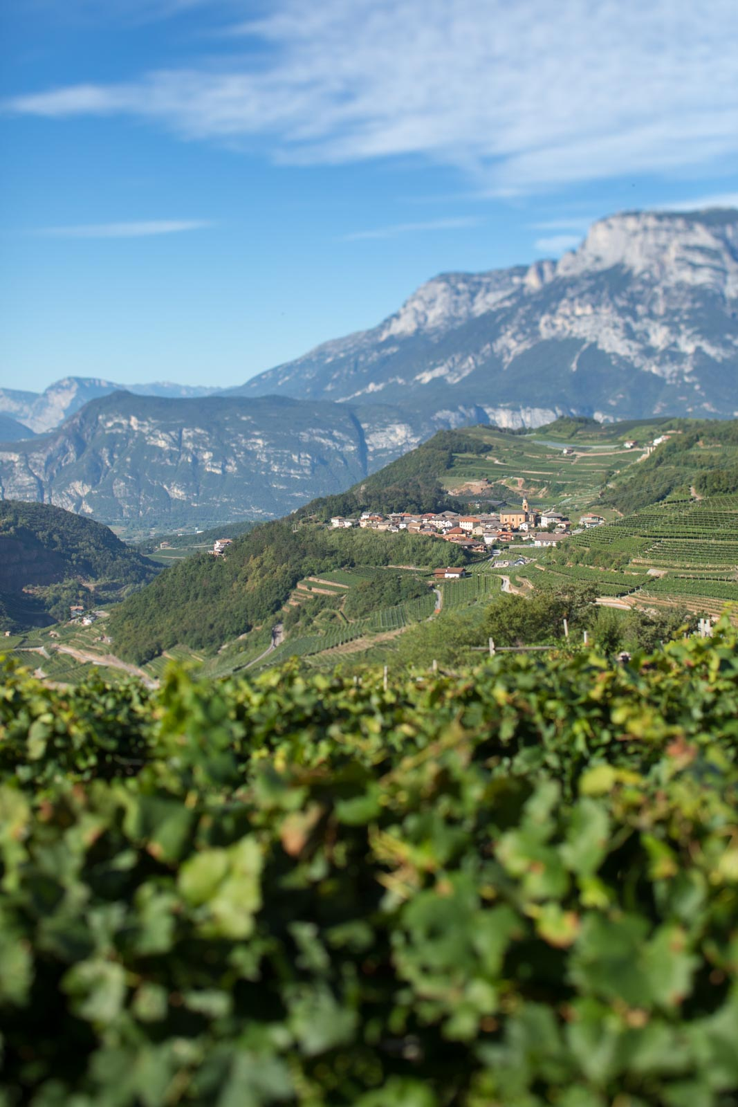 The village of Palù di Giovo in the Val di Cembra, where Cesarini Sforza sources many of its grapes. ©Kevin Day/Opening a Bottle