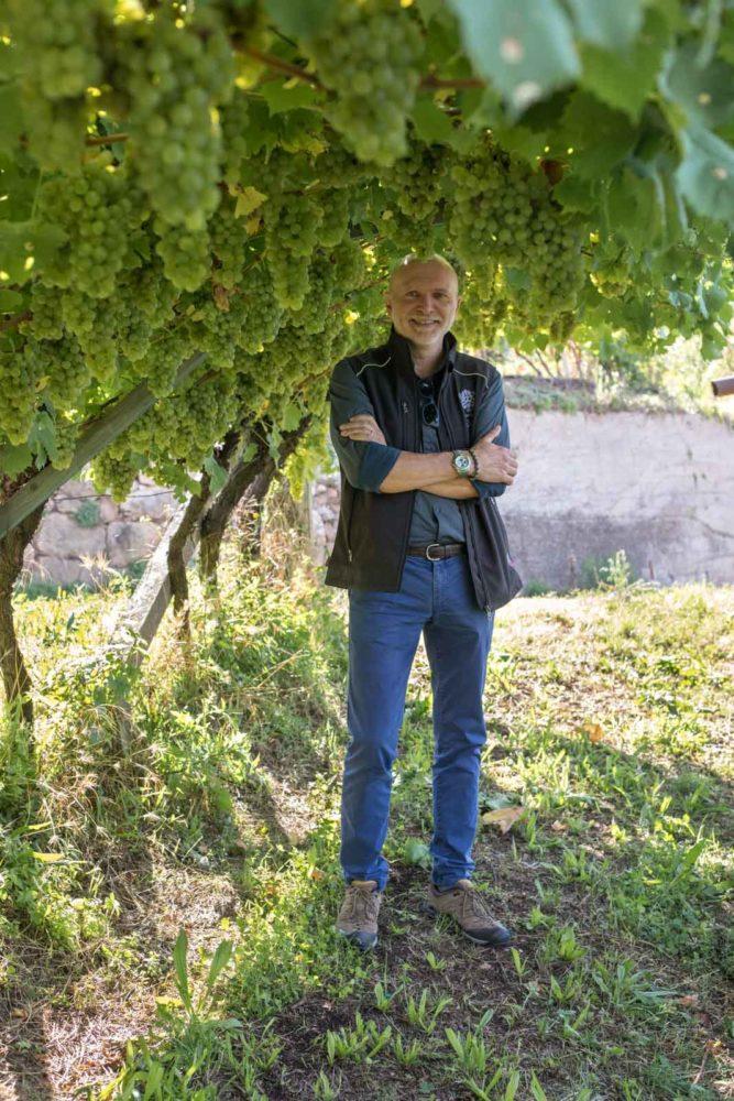 Cesarini Sforza's Agronomist Corrado Aldrighetti in the pergola-trained vines of the Val di Cembra. ©Kevin Day/Opening a Bottle