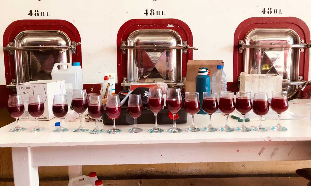 Sampling the 2019 harvest fresh from the tank at Domaine Dujac. ©Alexandra Karosis