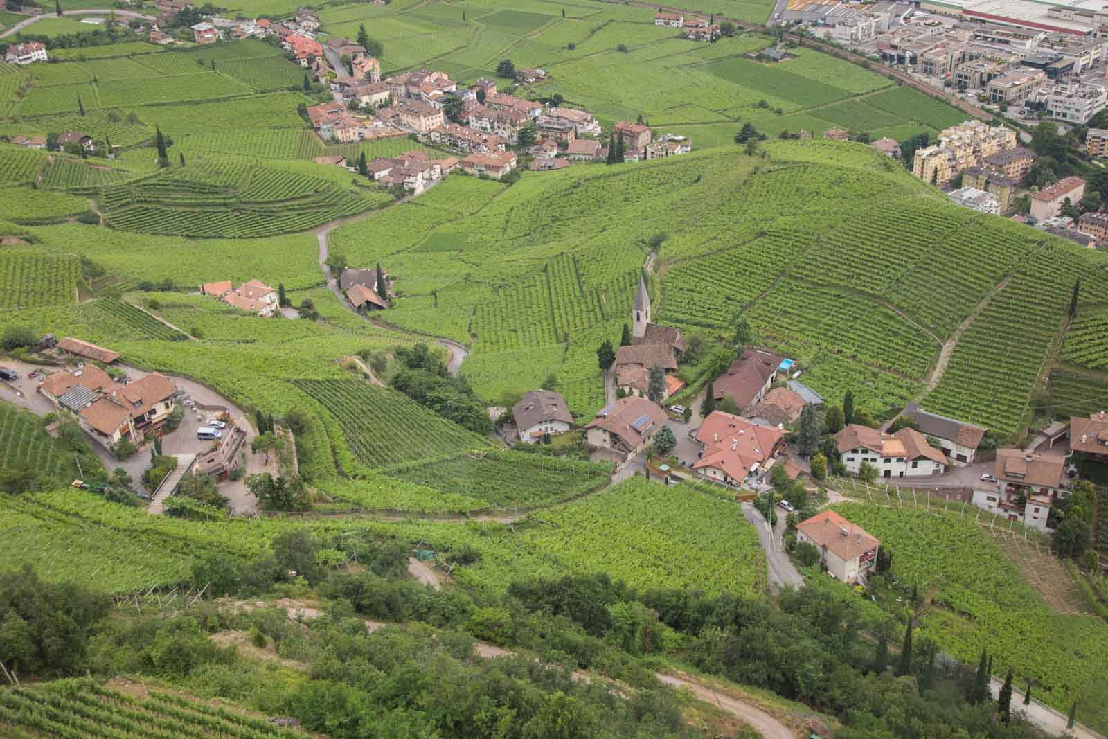 An overview from the Ritten lift of the Santa Maddalena vineyards near Bolzano. ©Kevin Day/Opening a Bottle
