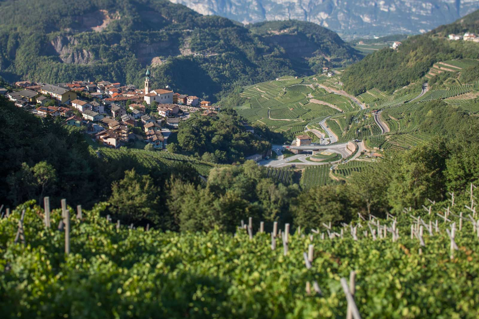 The village of Verla in the Val di Cembra, a spectacular valley decked in Chardonnay and Pinot Nero vines outside Trento. ©Kevin Day/Opening a Bottle