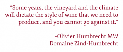 "Pull quote: """"Some years, the vineyard and the climate will dictate the style of wine that we need to produce, and you cannot go against it."" –Olivier Humbrecht MW Domaine Zind-Humbrecht"