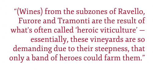 "Pull quote: ""(Wines) from the subzones of Ravello, Furore and Tramonti are the result of what's often called 'heroic viticulture' — essentially, these vineyards are so demanding due to their steepness, that only a band of heroes could farm them."""