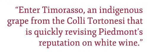 """Pull quote: """"Enter Timorasso, an indigenous grape from the Colli Tortonesi that is quickly revising Piedmont's reputation on white wine."""""""