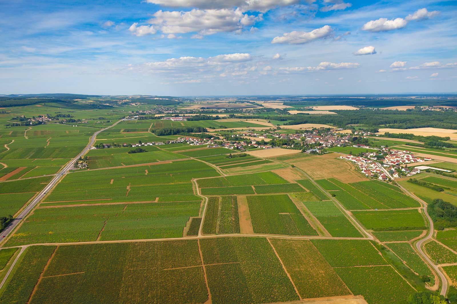 An aerial view of Chorey-les-Beaune. Note the flatness: this is the Côte de Beaune? It sure is. ©BIVB / Aurélien Ibanez