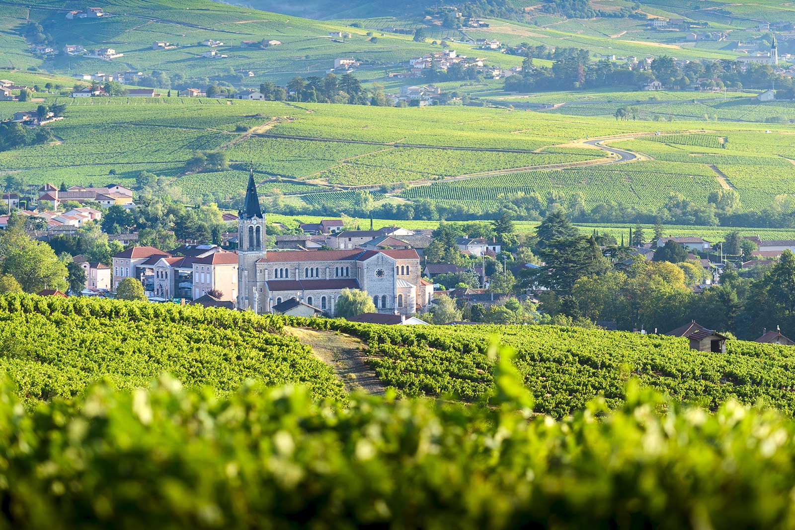 A view over Morgon in the hills of Beaujolais
