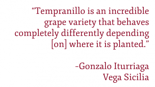 """Gonzalo Iturriaga quote: """"Tempranillo is an incredible grape variety that behaves completely differently depending [on] where it is planted."""""""