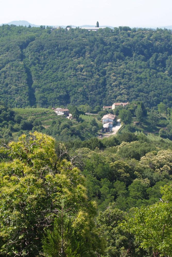 Ronchi di Cialla's position in the Cialla valley takes full advantage of its cool climate. ©Ronchi di Cialla