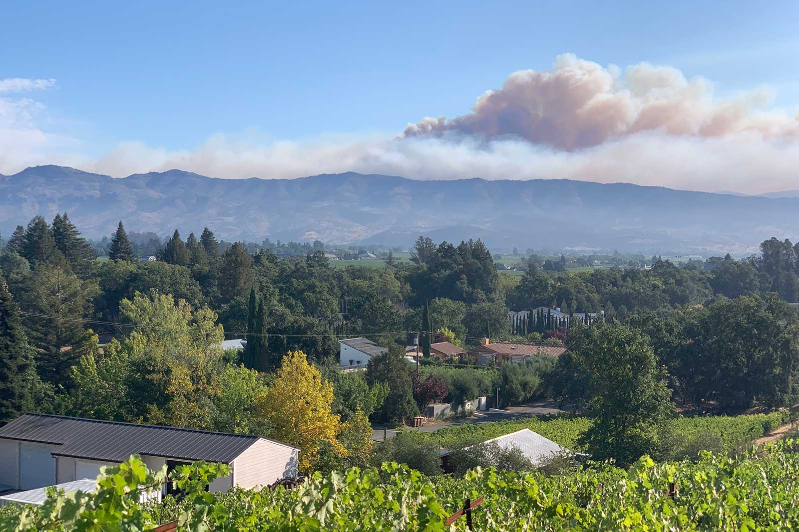 The LNU Lightning Complex Fire burns outside Napa in the late summer of 2020. ©Matthiasson Wines