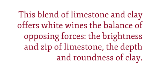 """Pull quote on Sancerre wine and Kimmeridgian marl: """"This blend of limestone and clay offers white wines the balance of opposing forces: the brightness and zip of limestone, the depth and roundness of clay."""" – Kevin Day"""