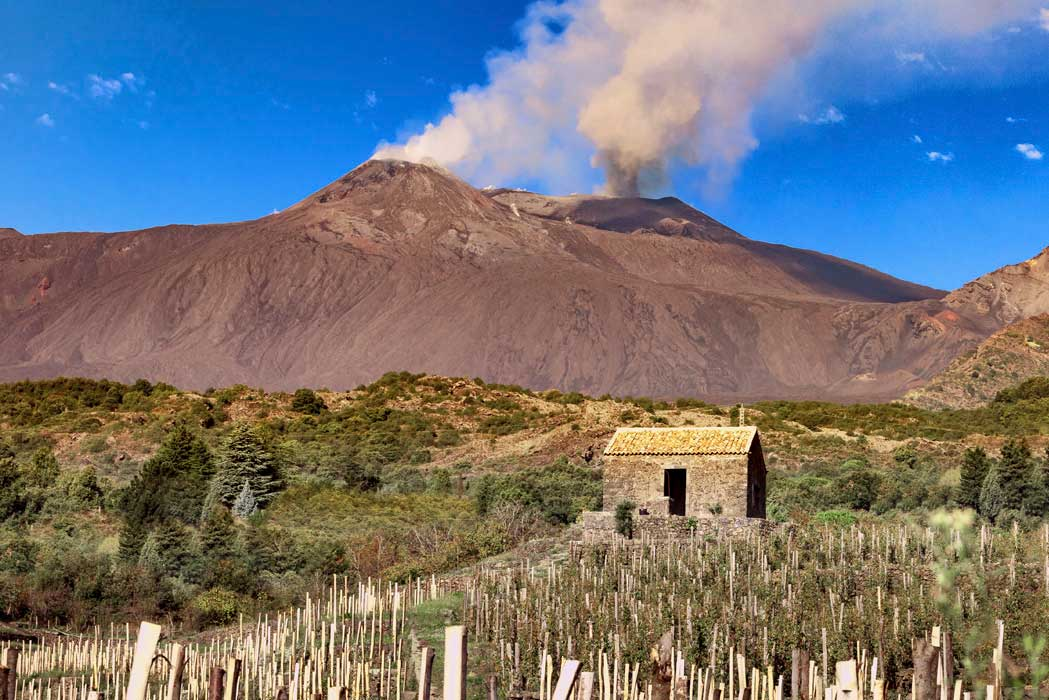In a frequent state of smoldering, Mount Etna provides an ever-present reminder of the soil beneath the vineyards. ©Benanti