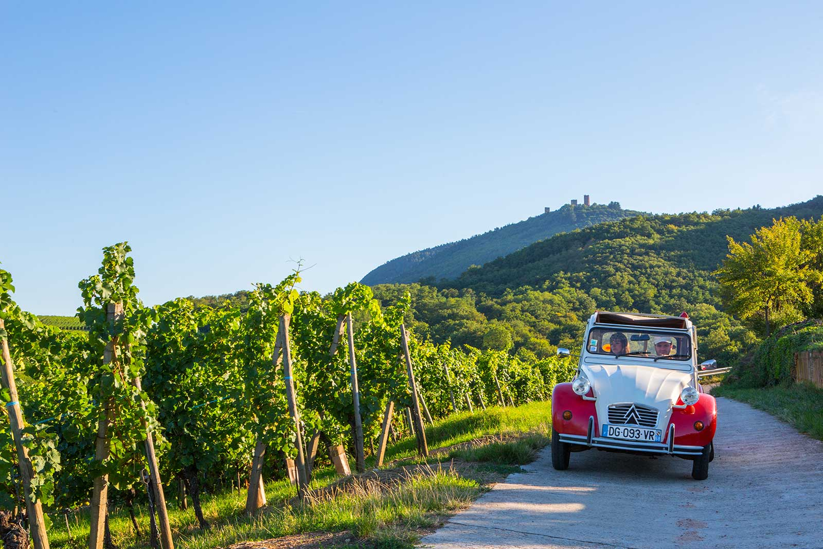 Maxime and Sophie drive an antique Citroen through the vineyards because ... why not? (Promotional photo provided by ©Barmès-Buecher)