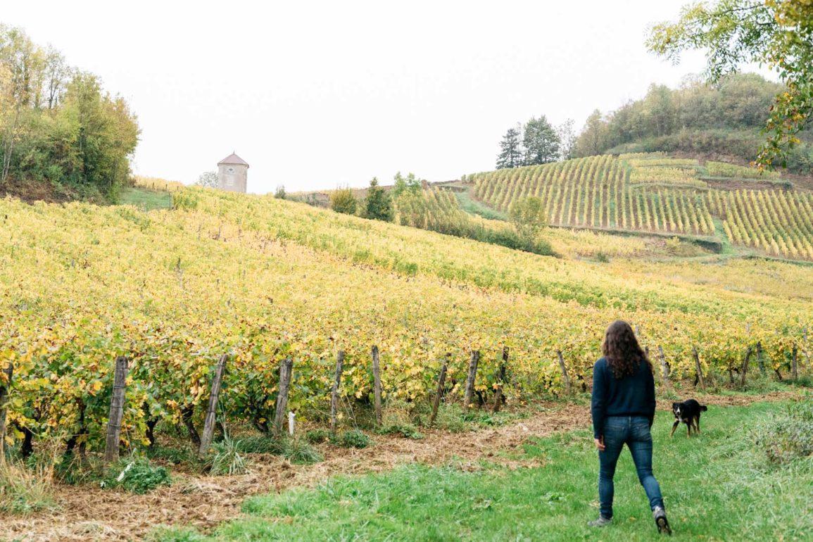 Natural winemaker Alice Bouvot walks among her vines in the Jura of eastern France. / ©Cecilia Magnusson